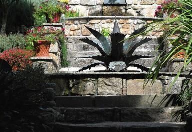 The Agave Fountain